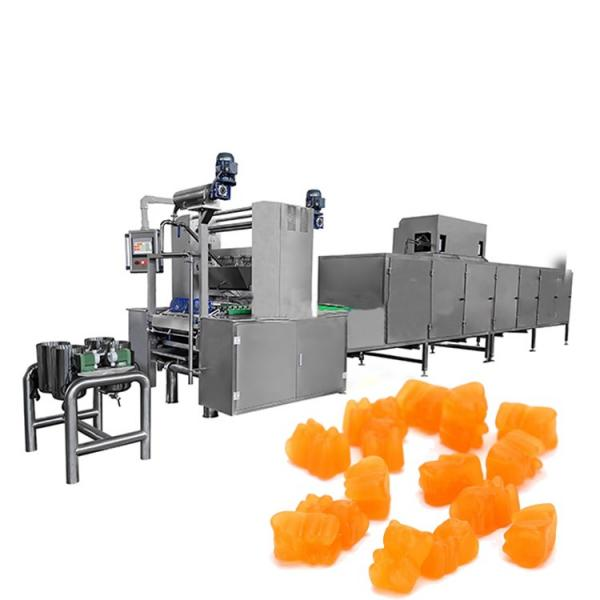 Fully Automatic Gummy Bear Candy Machine Factory Price/Jelly Candy Production Line